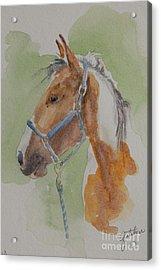 Paint I Acrylic Print by Gretchen Bjornson