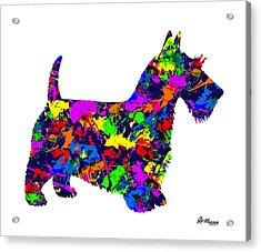 Paint Splatter Scottish Terrier Acrylic Print
