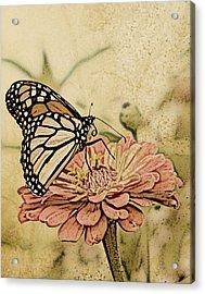 Painted Beauty Acrylic Print by Sally Engdahl