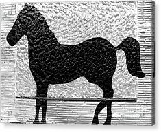Acrylic Print featuring the photograph Painted Black - Stone Pony by Colleen Kammerer