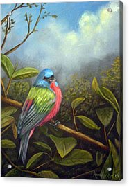 Painted Buenting Acrylic Print