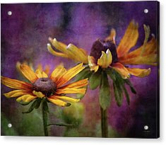 Painted By The Sun 2757 Idp_2 Acrylic Print