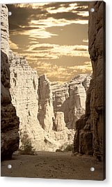 Painted Canyon Trail Acrylic Print