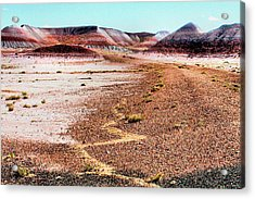 Painted Desert 0319 Acrylic Print by Sharon Broucek