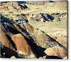 Painted Desert 11 Acrylic Print by Patricia Bigelow