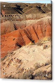 Painted Desert 3 Acrylic Print by Patricia Bigelow