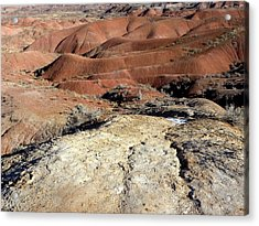 Painted Desert 8 Acrylic Print by Patricia Bigelow