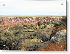Painted Desert Winter 0571 Acrylic Print by Sharon Broucek