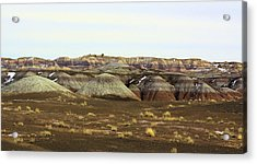 Painted Desert Winter 0576 Acrylic Print by Sharon Broucek