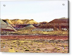 Painted Desert Winter 0602 Acrylic Print by Sharon Broucek
