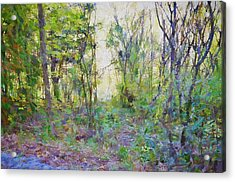 Painted Forrest Acrylic Print