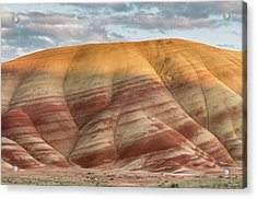 Painted Hill At Last Light Acrylic Print by Greg Nyquist