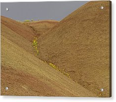 Painted Hills Balsam Acrylic Print