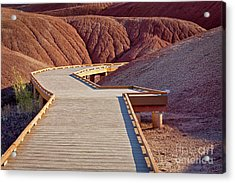Painted Hills Boardwalk Acrylic Print by Jerry Fornarotto