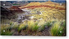 Painted Hills From Overlook Trail Acrylic Print by Adele Buttolph