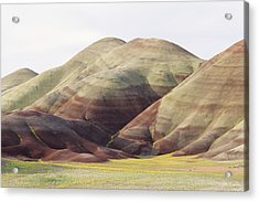 Painted Hills Acrylic Print by Greg Vaughn - Printscapes