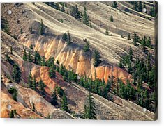 Painted Hills Acrylic Print