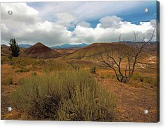 Painted Hills Landscape In Central Oregon Acrylic Print