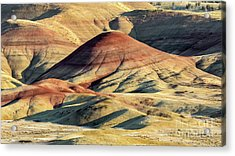 Painted Hills, Oregon Acrylic Print by Jerry Fornarotto