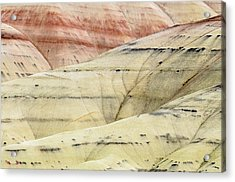 Painted Hills Ridge Acrylic Print by Greg Nyquist