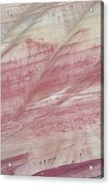 Acrylic Print featuring the photograph Painted Hills Textures 1 by Leland D Howard