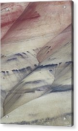 Acrylic Print featuring the photograph Painted Hills Textures 2 by Leland D Howard