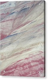 Acrylic Print featuring the photograph Painted Hills Textures 3 by Leland D Howard