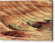 Painted Hills Textures Acrylic Print by Jerry Fornarotto