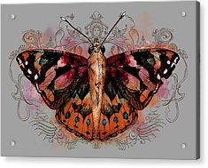 Painted Lady II Acrylic Print by April Moen