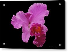 Acrylic Print featuring the photograph Painted Orchid by Phyllis Denton