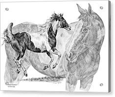 Painted Passion - Paint Horse Art Print Acrylic Print