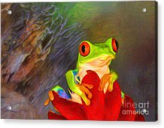 Painted Red Eyed Tree Frog Acrylic Print