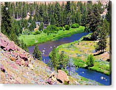 Acrylic Print featuring the photograph Painted River by Jonny D
