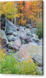 Painted Rocks Acrylic Print by David Chandler