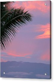 Acrylic Print featuring the photograph Painted Sky by Debbie Karnes