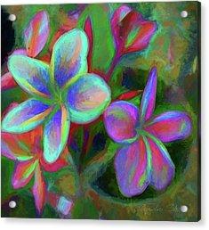 Painterly Frangipanis Acrylic Print