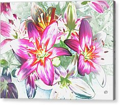 Painterly Pink Tiger Lilies Acrylic Print by Annie Zeno