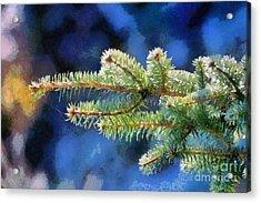 Painting Of Fir Tree Branch Acrylic Print