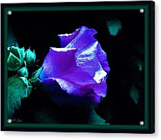 Painting Of The Hibiscus Acrylic Print by Debra Lynch