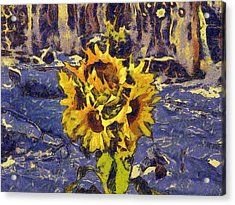 Painting With Five Sunflowers Acrylic Print