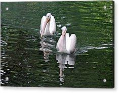 Pair Of Pelicans Acrylic Print by Teresa Blanton