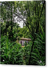 Paiseje Colombiano #10 Acrylic Print