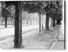 Acrylic Print featuring the photograph Palais Park by Dave Beckerman