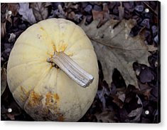 Pale Harvest Moon Acrylic Print by JAMART Photography