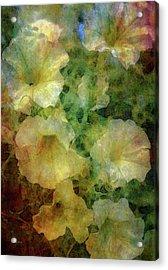 Pale Petunias 5146 Idp_2 Acrylic Print