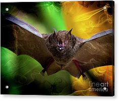 Acrylic Print featuring the photograph Pale Spear-nosed Bat In The Amazon Jungle by Al Bourassa