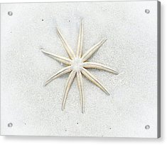 Pale Star Acrylic Print