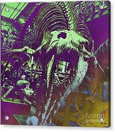 Paleo Squale Acrylic Print