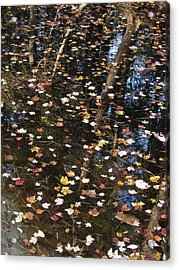 Palette Acrylic Print by Andy  Torraco