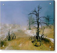 Palette Springs Acrylic Print